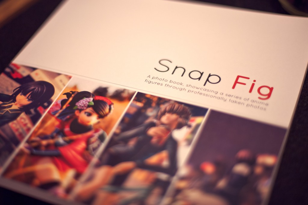 Project Snap Fig