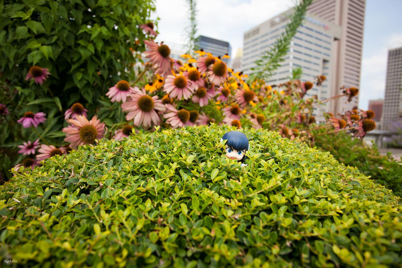 Satsuki's Otakon Adventure
