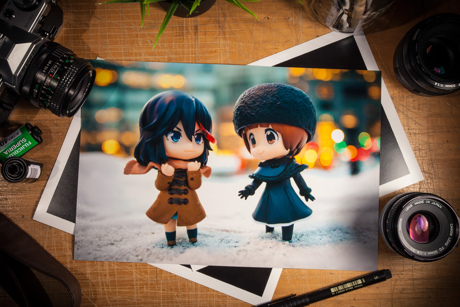 Mako & Ryuko Nendoroid Photo Print